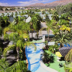 DP-Desert-Palms