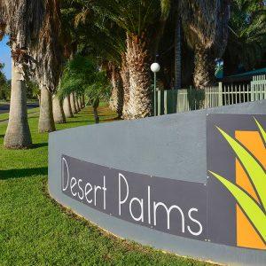 Desert-Palms-B